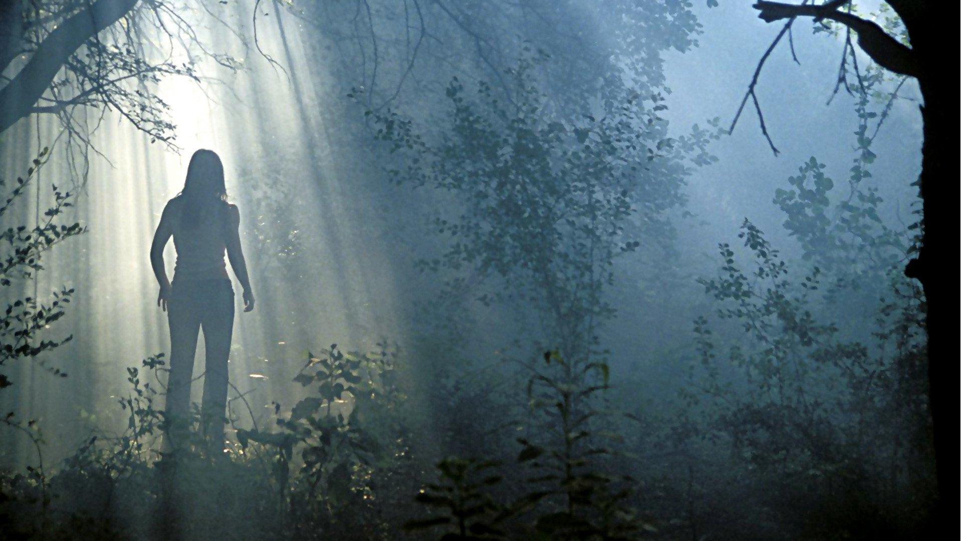 Forest massacre the teen